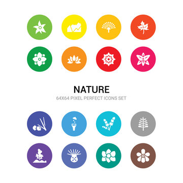 16 nature vector icons set included jasmine, jonquil, knapweed, landscape, larch, lavender, lemon and juice drop out, lemongrass, lily, lotus, lotus flower icons