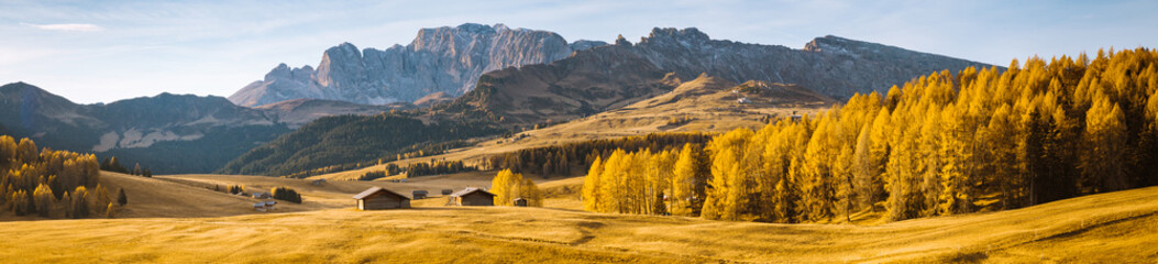 Canvas Prints Honey Alpe di Siusi at sunrise, Dolomites, South Tyrol, Italy
