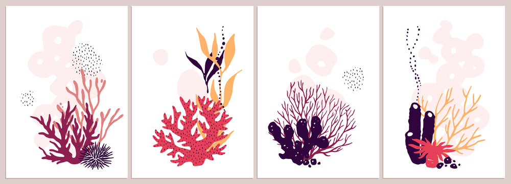 Set of isolated colorful corals compositions on a white background.