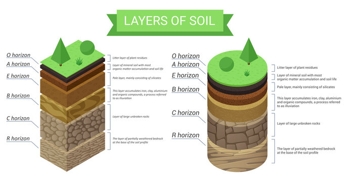 Education isometric diagram and detailed description of soil layers. Plant residue, green grass, fine mineral particles, sand,clay, humus and stones vector illustration.