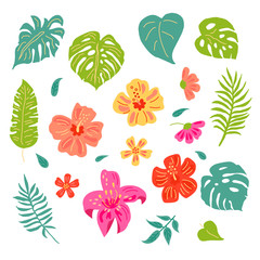 Tropical leaves and flowers set. Hand drawn sketch style vector illustration. Design elements isolated on white background. Flat style jungle plants.