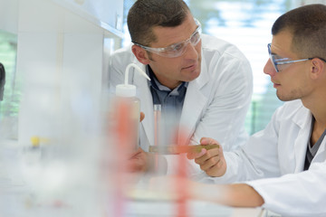 scientist discussing results of experiment with male colleague