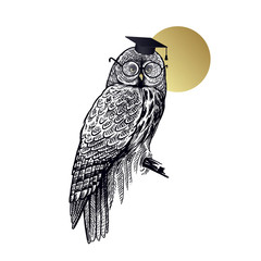 Wall Murals Owls cartoon Bird owl in square academic cap and glasses isolated on background of moon.
