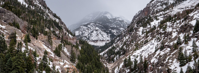 View of Colorados beautiful mountain ranges and trees from Bear Creek Falls viewpoint
