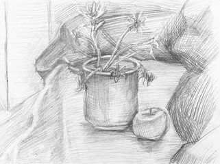 still-life with apple and dried flowers in bucket
