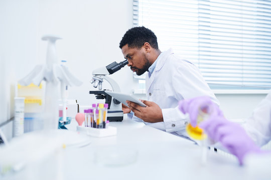 Concentrated handsome black male lab technician with beard sitting at table and using microscope while analyzing sample and working with data on tablet