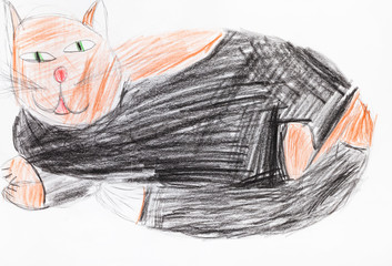 large fat black and brown cat by pencils