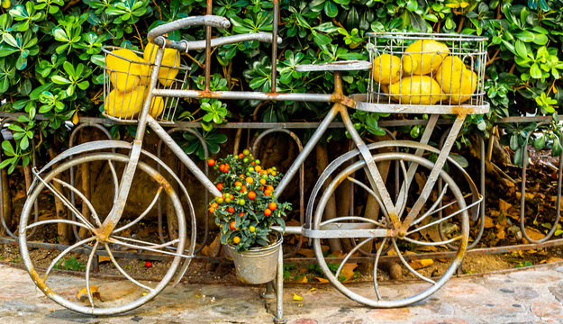 bicycle with gallini melons