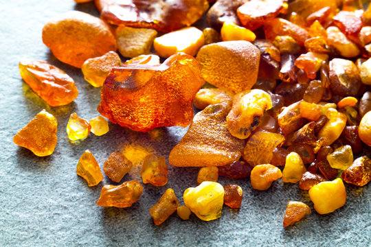Amber from the Baltic Sea