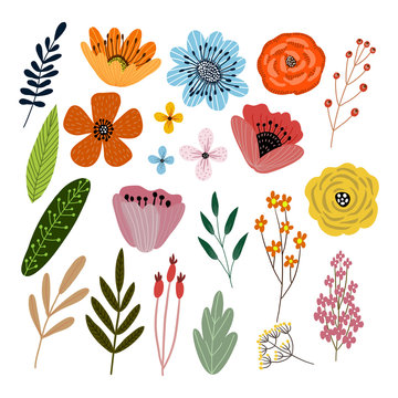 Vector set of isolated floral elements with hand drawn flowers on a white background