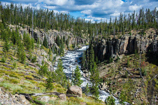 USA, Wyoming, Yellowstone National Park, Lewis river
