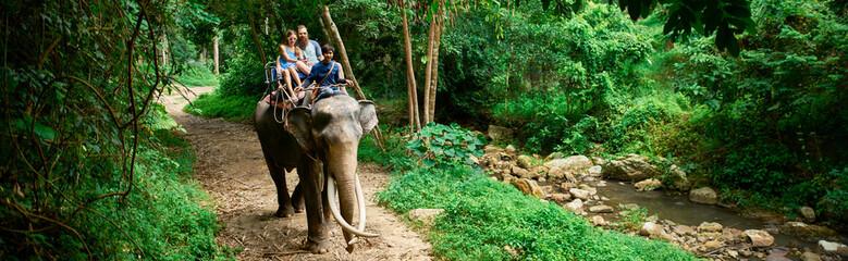 couple riding elephant in thai jungle on koh samui thailand