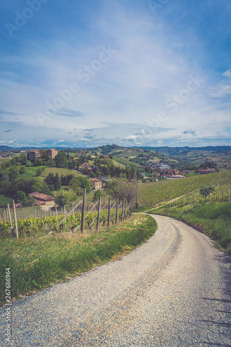 Langhe Monferrato wine area of Piedmont, Italy  Wine tasting region