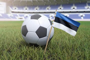 Estonian flag in stadium field with soccer football