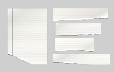 Set of torn note, notebook lined paper strips stuck on grey background. Vector illustration