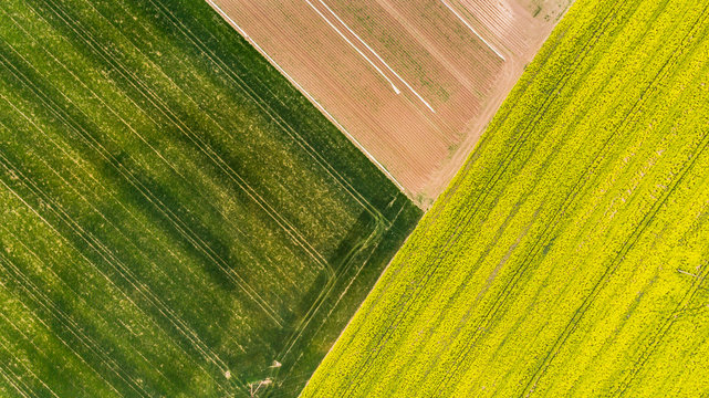 Colorful patterns in crop fields at farmland, aerial view, drone photo