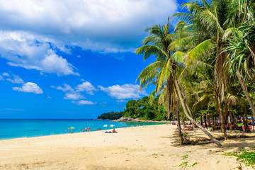 Wall Mural - Surin beach, Paradise beach with golden sand, crystal water and palm trees, Patong area on Phuket Island, Tropical travel destination, Thailand