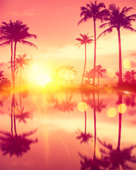 Wall Mural - Water reflection tropical palm tree with colorful bokeh sun light on sunset sky cloud abstract background.