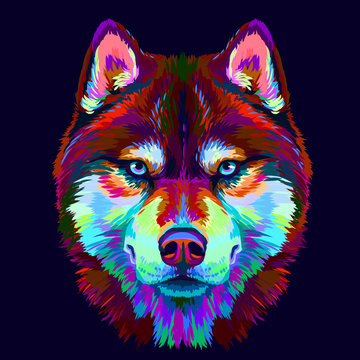 Abstract multi-colored portrait of Siberian Husky with blue eyes on a dark blue background in pop art style