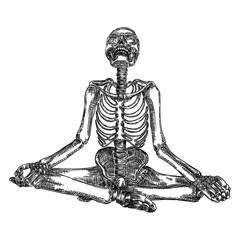 Human skeleton in yoga meditation or Lotus position with skull thrown back. Halloween element. Vector