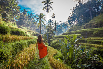 Papiers peints Bali Young woman in red dress walking in rice fields Bali in Tegallalang. Rustic Ubud village landscape outside. Fashion style