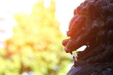 the image of chinese lion head Vancouver