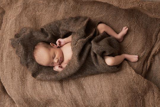 newborn girl sleeps on sackcloth, portrait, flowers, brown