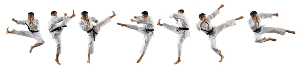 Martial arts masters isolated