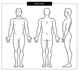 men's body and anatomy