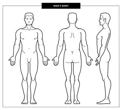 men's body and anatomy