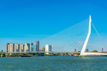 Photo sur Aluminium Rotterdam Skyscrapers and Erasmus bridge in Rotterdam, Netherlands