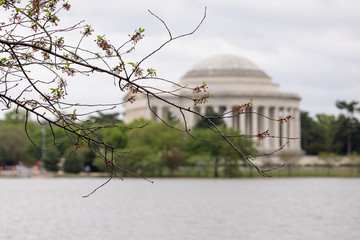 Jefferson Memorial view from the Potomac