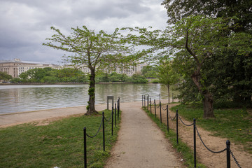 Jefferson Memorial's gardens, DC