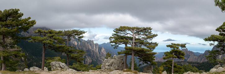Foto auf Gartenposter Rosa dunkel Bavella Needles, typical mountain landscape of Corsica, France.