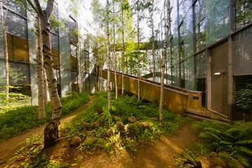 Innenhofbepflanzung