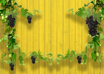 of wild grapes and hop leaves on a wooden wal with copy space Fototapete