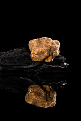 White truffle (tuber magnatum) on black.
