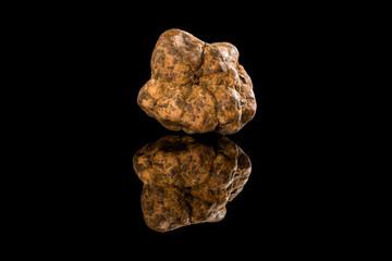 Fototapeta White truffle (tuber magnatum) on black. obraz