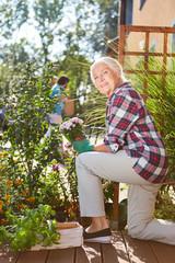 Seniorin im Garten beim Einpflanzen von Blumen