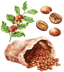 Foto op Aluminium Kruiden 2 Hand drawn watercolor coffee set with berries, leaves and sack, isolated on white background. Food illustration.