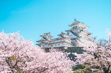 Deurstickers Kersenbloesem 姫路城の桜 -Sakura- Cherry Blossoms and Himeji Castle