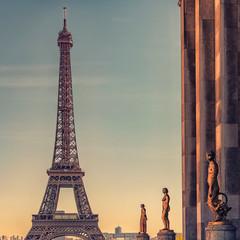 Fototapete - Eiffel tower in Paris at sunset