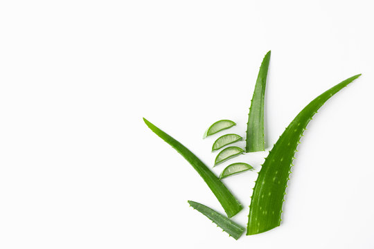 Aloe vera leaves and slices on white background, space for text. Natural treatment