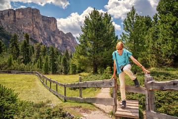 Col Raiser Alp, Val Gardena, Dolomite Alps, Trentino-Alto Adige, Italy, xxl+more: bartussek.xmstore