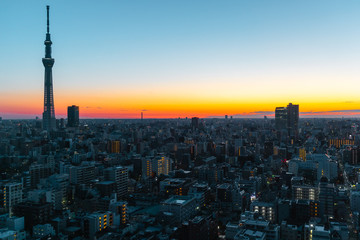 Poster Tokio Tokyo skyline at sunrise/ sunset