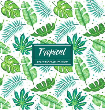 Tropical seamless pattern with exotic palm leaves on white background. Perfect for wallpapers; pattern fills; web page backgrounds; surface and fabric textures...
