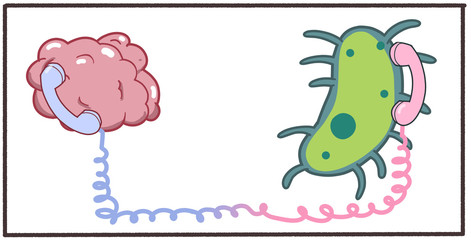 Cartoon 2d artwork showing communication between microbiome gut bacteria and brain central nervous system. Digital illustration on white background.