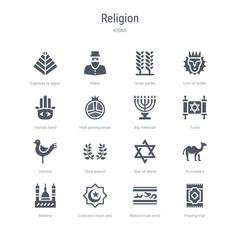set of 16 vector icons such as praying mat, muhammad word, crescent moon and star, medina, dromedary, star of david, olive branch, chicken from religion concept. can be used for web, logo,