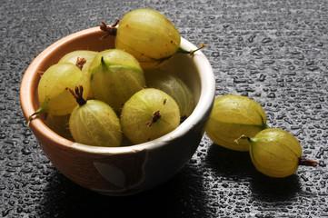 Uva spina  ft7109_9076 Ribes uva-crispa