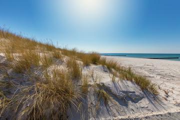 Papiers peints La Mer du Nord Sanddünen am Strand von Vitte auf Hiddensee